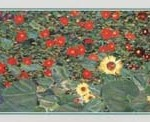 Garden of sunflowers (detail)