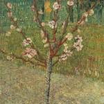 Gogh Van,19,FRA, Almond Tree in Blossom