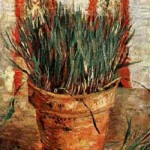 Gogh Van,19,FRA, Flowerpot with Chives