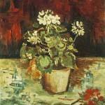 Gogh Van,19,FRA, Geranium in a Flowerpot