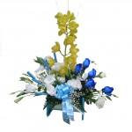 azzurro,_cymbidium-rose-lisiantus