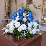 rose blu papiri