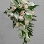 rose_calle