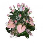roseanthurium
