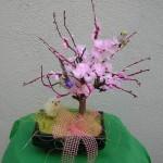 bonsaipasqua2009