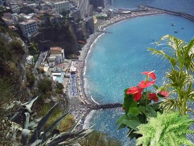 piante e vacanze